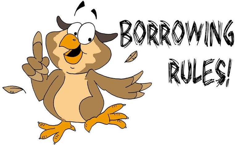 Borrowing Rules