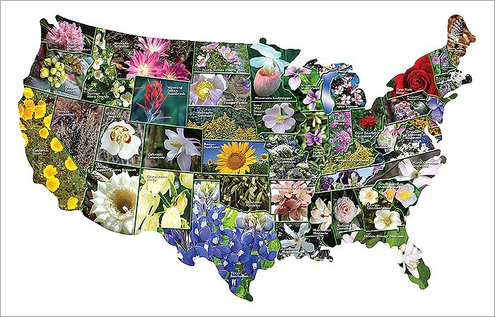 StateMap State Flowers