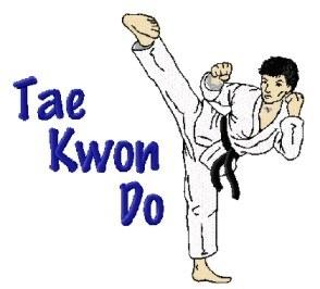 Tai Kwon Do Kick